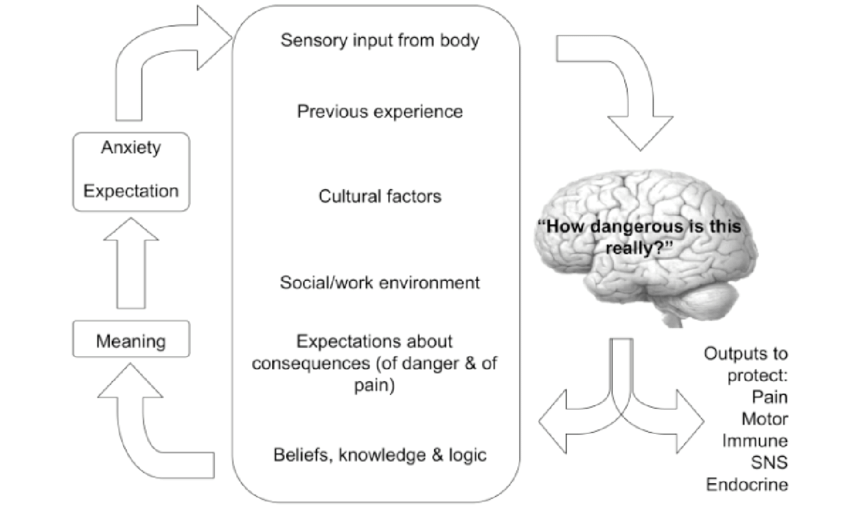 Many inputs affect the implicit perception of threat to body tissues, labelled here as 'How dangerous is this really?' Those inputs have wider meaning effects, which in turn seems to affect anxiety, attention and expectation. The implicit perception of threat to body tissues determines pain and in turn influences other inputs.